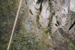 Grotta-del-Cavallo-30
