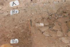 Grotta-del-Cavallo-52