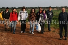 Scout 2011