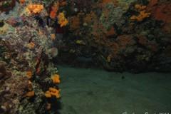 Grotta-dei-Cerianti-2